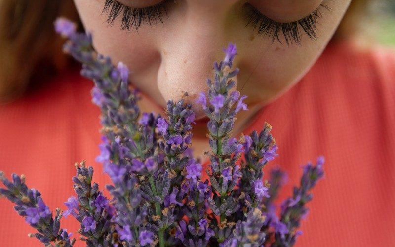 香りとグラウンディング|アロマや香水を効果的に使おう